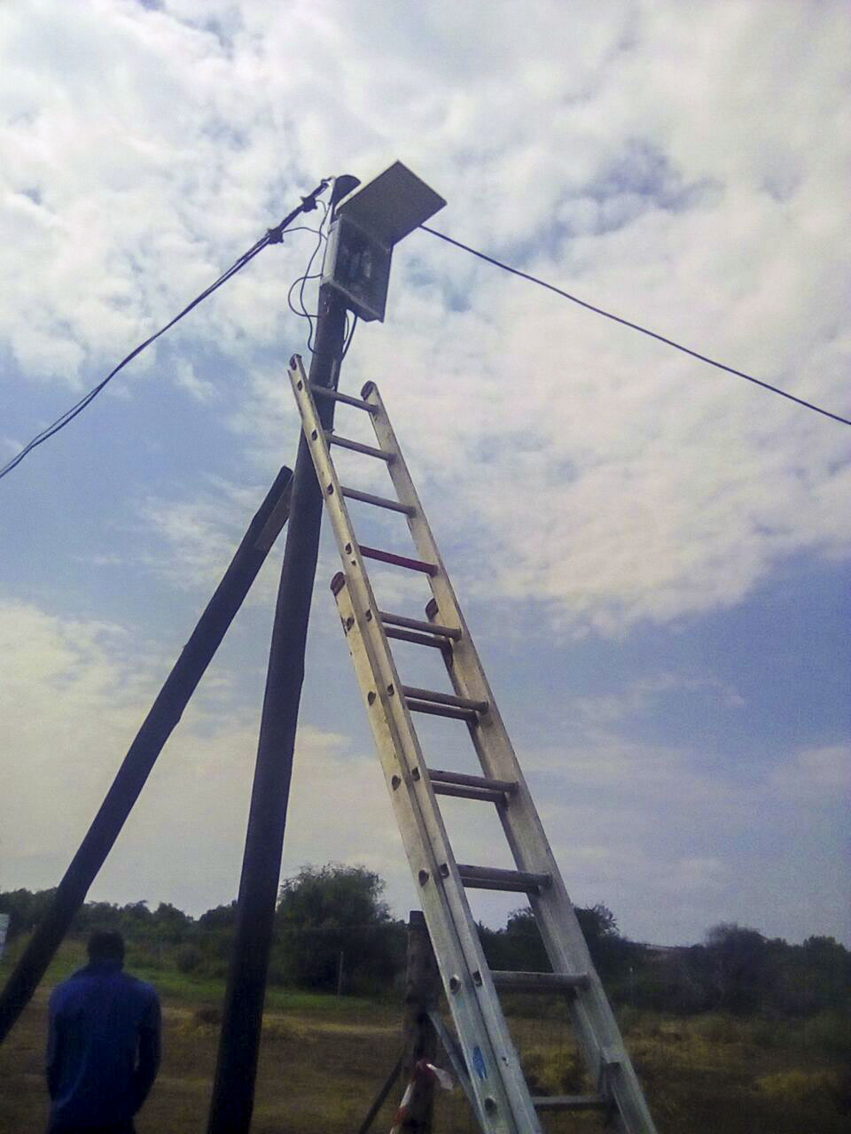 ladder on a electrical pole